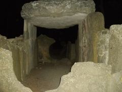 Dolmen des Fades ou Palet de Roland - This building is indexed in the Base Mérimée, a database of architectural heritage maintained by the French Ministry of Culture,under the reference PA00102854 .