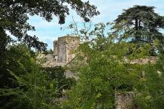 Abbaye de Villelongue (restes de l'ancienne) - Abbaye Sainte-Marie de Villelongue, vue générale