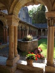Ancienne abbaye de Saint-Papoul - L'abbaye de Saint-Papoul, commune située dans l'Aude