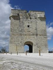 Tour Carbonnière - Français:   Tour Carbonnière, commune de Saint-Laurent-d\'Aigouze (30).