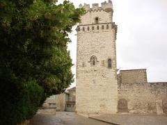 Eglise Saint-Laurent - English:   St.Laurent-des-Arbres (Gard, Fr) église-château