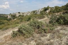Vestiges de l'oppidum de la Roque - Français:   Oppidum de la Roque - Falaise sur le Coulazou  Cet oppidum s\'élève sur un éperon rocheux d\'une cinquantaine de mètres au confluent de la Mosson, du Lez et du Coulazou. Parfaitement fortifié, l\'éperon était déjà défendu naturellement par deux à-pics. Les objets découverts au 18ème siècle et après ont permis d\'attribuer sa construction aux Volques Arécomiques. Source: Persée / Audibert Jacques. L\'Oppidum de La Roque, commune de Fabrègues (Hérault). In: Bulletin de la Société préhistorique française.  1956, tome 53, N. 10. pp. 599-608.