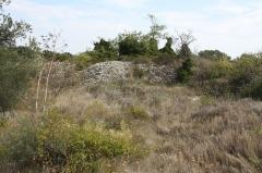 Vestiges de l'oppidum de la Roque - Français:   Fabrègues (Hérault) - oppidum de la Roque - Vestige de mur  Cet oppidum s\'élève sur un éperon rocheux d\'une cinquantaine de mètres au confluent de la Mosson, du Lez et du Coulazou. Parfaitement fortifié, l\'éperon était déjà défendu naturellement par deux à-pics. Les objets découverts au 18ème siècle et après ont permis d\'attribuer sa construction aux Volques Arécomiques. Source: Persée / Audibert Jacques. L\'Oppidum de La Roque, commune de Fabrègues (Hérault). In: Bulletin de la Société préhistorique française.  1956, tome 53, N. 10. pp. 599-608.