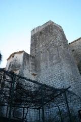 Château - Laroque - Donjon du château.