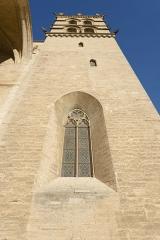 Cathédrale Saint-Pierre - Cathédrale Saint-Pierre de Montpellier. Montpellier, Hérault, France