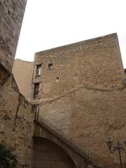Ancien observatoire dit Tour de la Babotte - Català: Torre de la Babòta (Montpeller)