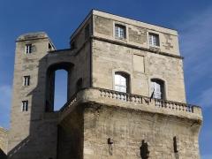 Ancien observatoire dit Tour de la Babotte - Català: Vista frontal de la part superior des de l'esquerra de la Torre de la Babòta (Montpeller)