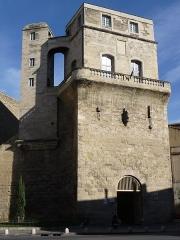 Ancien observatoire dit Tour de la Babotte - Català: Vista frontal des de l'esquerra de la Torre de la Babòta (Montpeller)