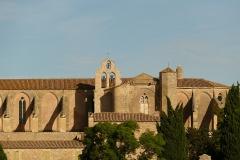 Ancienne abbaye de Sainte-Marie de Valmagne -  Abbaye Sainte Marie de Valmagne.