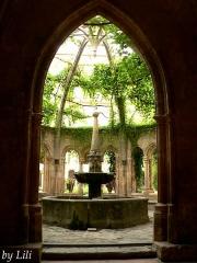 Ancienne abbaye de Sainte-Marie de Valmagne - Abbaye de Valmagne