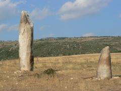 Menhirs de la Veissière - English: Couple de menhirs du groupe de la Veissière, sur le site de la Cham des Bondons en Lozère (France)