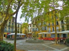 Fontaine publique des Nou Raigts - Català: Plaça de la font dels 9 rajolins, a Ceret (Vallespir)
