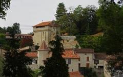 Château - Français:   Château d\'Aubeterre (Charente, France)