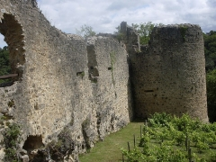 Ruines du château - Deutsch:   Schlossruine in Saint Germain de Confolens, Charente, Frankreich.