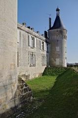 Château - Français:   Tour sud et vue partielle des douves dans leur état actuel. Château de Jonzac, Charente-Maritime, France.