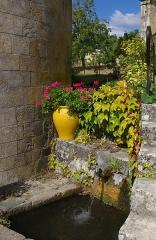 Vestiges de l'ancienne abbaye de Fontdouce - Français:   Abbaye de Fontdouce (XIIe-XVe siècles, restaurée au XXe): fontaine.Saint-Bris-des-bois, Charente-Maritime (France)