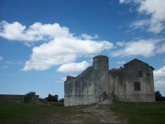 Château - Français:   Le Chateau de St Jean d\'Angle en Charente-Maritime