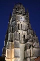 Eglise Saint-Pierre - Cathédrale Saint-Pierre la nuit
