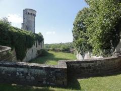 Château de Taillebourg - English: Taillebourg (Charente-Maritime) château, la tour