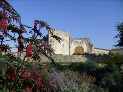Ruines de l'ancienne abbaye -  L'église abbatiale de Trizay