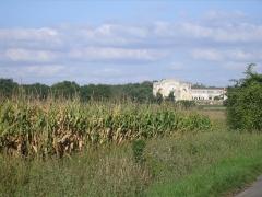 Ruines de l'ancienne abbaye -  L'abbaye de Trizay