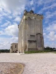 Ancien château, actuellement Hôtel de ville - English: Pons (Charente-Maritime) donjon PA00105316