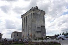 Ancien château, actuellement Hôtel de ville -  Keep, Pons, France.