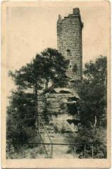 Château de Waldeck (ruines) -
