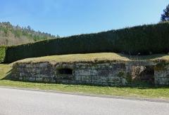 Verrerie de Lettenbach - Français:   Lettenbach (Saint-Quirin, Moselle): vestiges de l\'ancienne verrerie