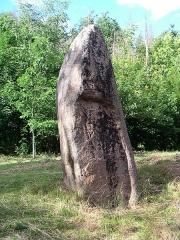 Menhirs de Pierre-Borne à la Maladrerie - Français:   Menhir en granite sur la commune de Raon-l\'Étape (Vosges)