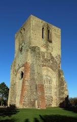 Ancienne abbaye Saint-Winoc - Nederlands: Sint-Winoksbergen (département du Nord, Frankrijk): vieringtoren van de voormalige abdijkerk, ook wel Tour Carrée genaamd