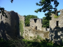Château du Ranroët (ruines) - This building is inscrit au titre des Monuments Historiques. It is indexed in the Base Mérimée, a database of architectural heritage maintained by the French Ministry of Culture,under the reference PA00108629 .