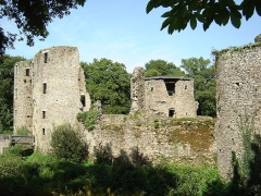 Château du Ranroët (ruines) - This building is indexed in the Base Mérimée, a database of architectural heritage maintained by the French Ministry of Culture,under the reference PA00108629 .
