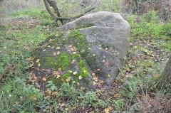 Menhir à cupules - Français:   Menhir de Coicas, Saint-André-des-Eaux.