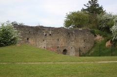 Motte féodale et donjon (restes) - Français:   Motte carolingienne, Fr-49-Doué-la-Fontaine.