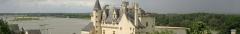Château - This building is en partie classé, en partie inscrit au titre des monuments historiques de la France. It is indexed in the base Mérimée, a database of architectural heritage maintained by the French Ministry of Culture,under the references IA49009670   and PA00109211 .