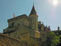 """Château - Château de Montsoreau, xvème siècle Alexandre Dumas a rendu célèbre le nom de Monsoreau dans son roman La Dame de Monsoreau ( sans """"t"""").  L'histoire met en scène les amours de Diane de Méridor, épouse de Charles de Chambes, comte de Monsoreau, et de son amant Louis de Bussy d'Amboise."""