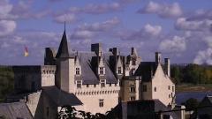 Château - English:   Château de Montsoreau (in the background, the Centrale nucléaire de Chinon is visible).