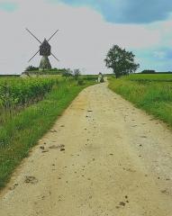 Moulin à vent de la Tranchée - English:   Windmill of La Tranchée in Montsoreau (Maine-et-Loire), listed one of the most beautiful villages of France, member of the most beautiful villages of the world.