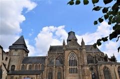 Abbaye bénédictine Notre-Dame d'Evron devenue Couvent de la Charité d'Evron - Extérieur de la basilique Notre-Dame de l'Épine d'Évron (53). Vue méridionale.