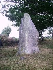 Menhir de Saint-Civière - Français:   Menhir de Saint Civière de face, Le Pas, Mayenne