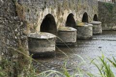 Vieux Pont sur la Vègre - Deutsch: Alte Brücke in Asnières-sur-Vègre im Département Sarthe (Pays de la Loire/Frankreich)