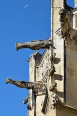 Eglise Notre-Dame-des-Marais - Français:   Gargouilles de l\'Église Notre-Dame-des-Marais de La Ferté-Bernard, Sarthe