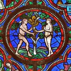 Cathédrale Saint-Julien - Français:   La tentation d\'Adam et Ève, détail d\'un vitrail (XIIème siècle, restauré au XIXème) de la Chapelle de la Vierge dans la Cathédrale Saint-Julien - Le Mans (Sarthe)