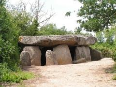 Dolmen dit de la Frébouchère - Français:   Le dolmen de la Frébouchère
