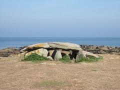 Dolmen des Landes - Ile d'Yeu - Dolmen de la Planche-à-Puare