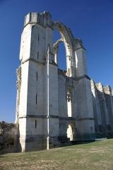 Ancienne abbaye Saint-Pierre - Ruines de l'abbaye de Maillezais - Vieille abbaye Saint-Pierre