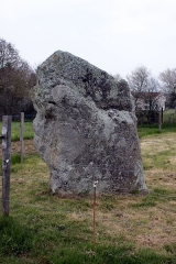 Menhir de la Petite-Roche - Français:   Menhir de la Petite Roche, Fr-85-Saint-André-Treize-Voies.