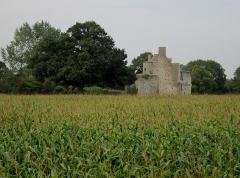 Ensemble des ruines du château de Montfort - Français:   château de Montfort, Remilly-sur-Lozon, Manche
