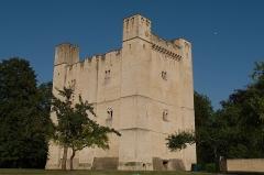 Château fort - Français:   Donjon de Chambois (Orne, France), château du  XIIe siècle